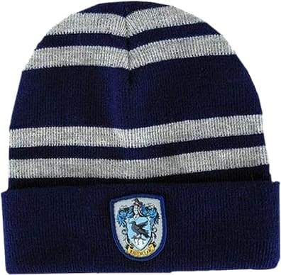 Image Harry Potter - Ravenclaw House Beanie