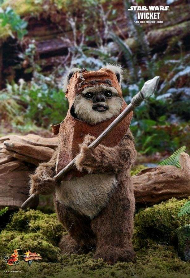 Image Star Wars - Wicket Return of the Jedi 1:6 Scale Action Figure